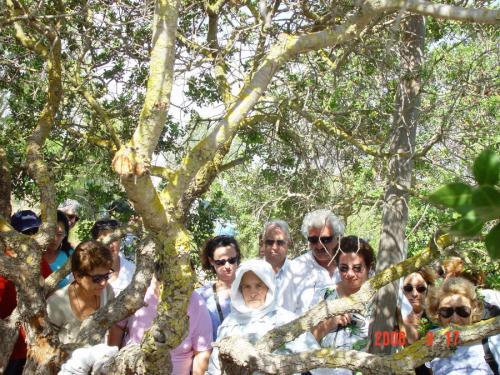 ΧΙΟΣ ΣΕΠΤΕΜΒΡΙΟΣ 2006